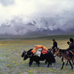 Tibetan nomads of the Golog region. Photo credit Matthieu Ricard.