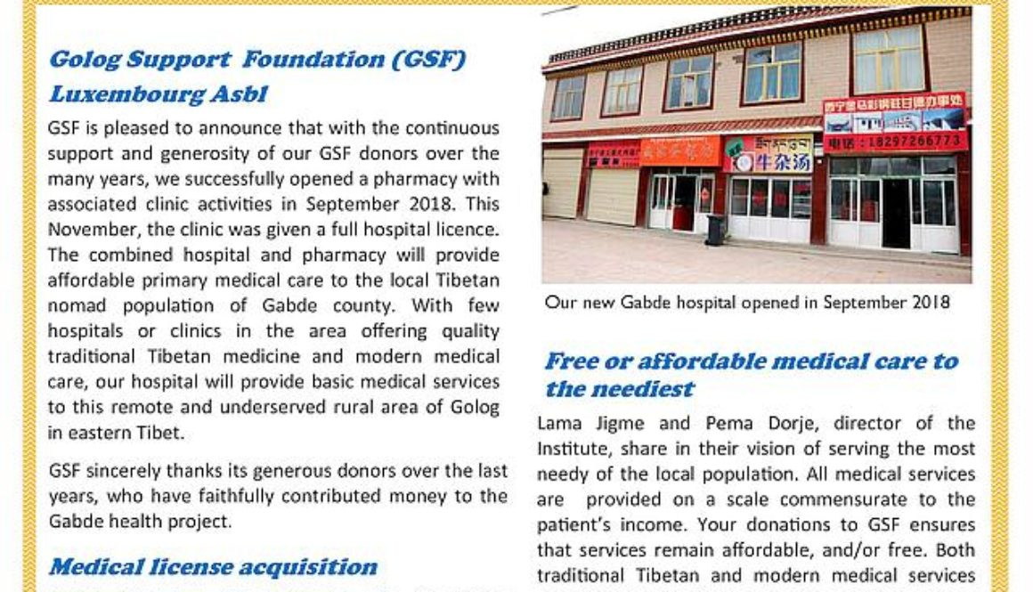 Donors-Report-GSF-2018